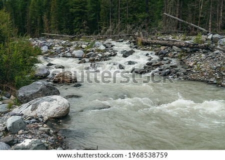 Beautiful scenery with powerful mountain river with stones and boulders in green forest. Scenic landscape with turbulent river and coniferous trees. Fast flow of mountain river among wild alpine flora Royalty-Free Stock Photo #1968538759
