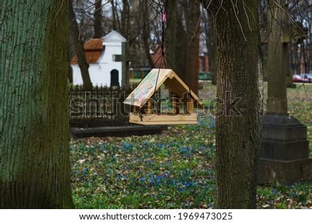 Wooden bird feeder on tree in spring Park or garden Royalty-Free Stock Photo #1969473025