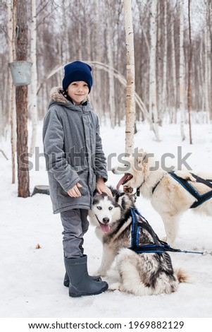 a boy in a gray jacket stands next to his husky dog.the guy smiles and strokes his friend on the hairy head. on the picture shows two dogs in slacks. Photo was taken in winter.