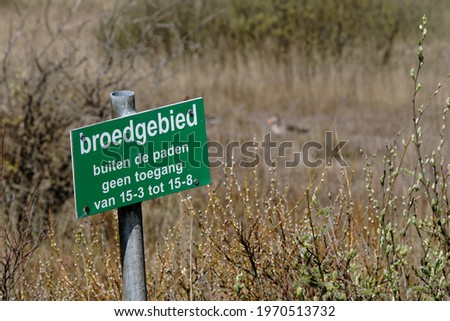 Ameland 2021, Warning sign with Dutch text:breeding area, no access outside the paths. Bird breeding area and dune nature reserve, reed collar and unsharp goose in background. Royalty-Free Stock Photo #1970513732