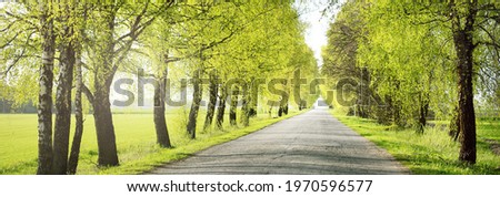 An empty alley (single lane rural road) through the green deciduous trees. Latvia. Spring landscape. Bicycle, sport, nordic walking concepts Royalty-Free Stock Photo #1970596577