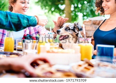 Young women on healthy pic nic breakfast with cute puppy at countryside farm house - Genuine life style concept with millennial friends having fun together outside at garden party - Focus on dog