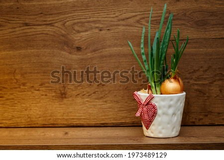 green onion in a white pot with heart pattern on the wooden background. High quality photo