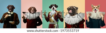 Tasty. Models like medieval royalty persons in vintage clothing headed by dog's heads on multicolored background. Concept of comparison of eras, artwork, renaissance, baroque style. Creative collage. Royalty-Free Stock Photo #1973553719