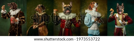 Royal. Models like medieval royalty persons in vintage clothing headed by dog's heads on dark vintage background. Concept of comparison of eras, artwork, renaissance, baroque style. Creative collage. Royalty-Free Stock Photo #1973553722
