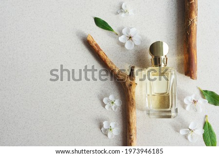 glass perfume bottle on light background with wooden fragments and flowers with sunlight. Summer floral woody perfume concept. Copy space Royalty-Free Stock Photo #1973946185