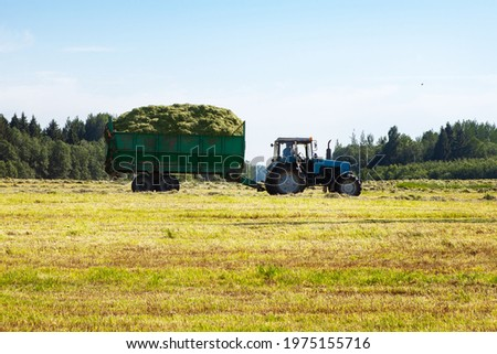 Tractor with a trailer filled with freshly cut grass. Hay making, grassland. General plan, panorama. Copy space. Royalty-Free Stock Photo #1975155716