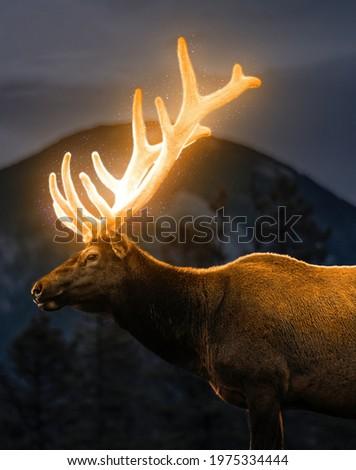 Glowing deer horns, deer horns, fantasy deer, fantasy background, high resolution image of deer Royalty-Free Stock Photo #1975334444