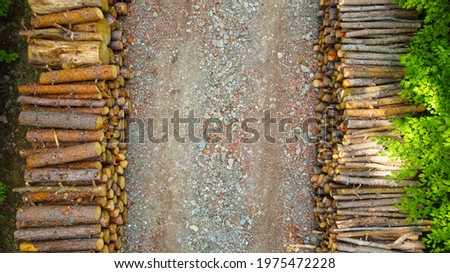 Fresh wood cut and lined in the forest Royalty-Free Stock Photo #1975472228