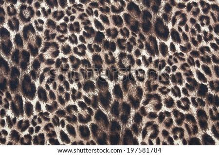 Tiger strip texture