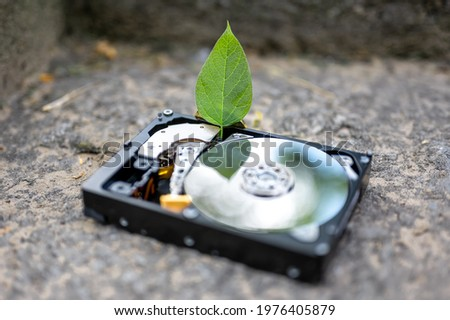 View on a hard disk drive with a chia leaf representing the cryptocurrencies on a concrete surface on a sunny day.