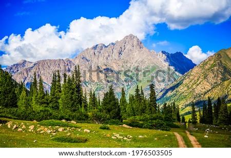 Mountain peaks beyond the mountain valley. Beautiful mountain valley landscape. Mountain peak view. Mountain valley landscape Royalty-Free Stock Photo #1976503505