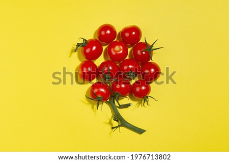 Juicy red tomato with green tail and shadow as fairy berry shape on yellow backdrop, copy space, top view. Modern color food background.