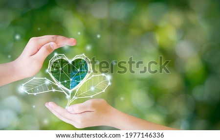 The environment in the hands of the tree planted seedlings is protected by the heart. Green background, bokeh, tree on grassland, nature, forest conservation concept, world conservation concept. Royalty-Free Stock Photo #1977146336