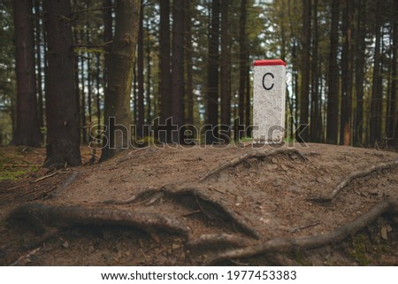 Boundary stone marking Czech Republic border in the middle of the forest. Royalty-Free Stock Photo #1977453383