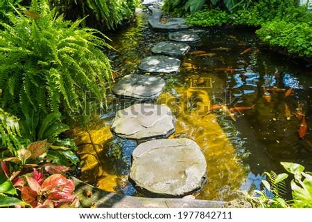 Stone platform, walkway across the garden fish pond Royalty-Free Stock Photo #1977842711