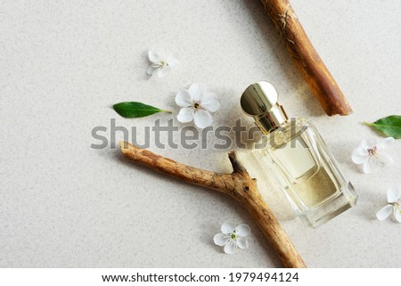 glass perfume bottle on light background with wooden fragments and flowers with sunlight. Summer floral woody perfume concept. Copy space Royalty-Free Stock Photo #1979494124