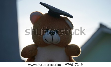 a teddy bear in an adorable graduation cap in the morning Royalty-Free Stock Photo #1979617319