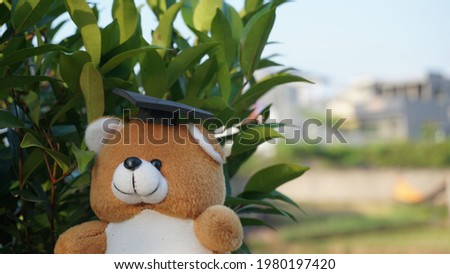a teddy bear in an adorable graduation cap with plant background Royalty-Free Stock Photo #1980197420
