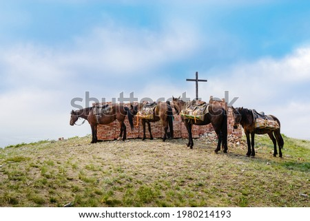 Pack horses delivering bricks to the site of the restoration of the destroyed chapel. The picture was taken on the top of the Chasovnaya mountain, near village of Andreevka, Orenburg region, Russia