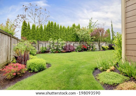 Fenced backyard. View of lawn and  blooming flower beds #198093590