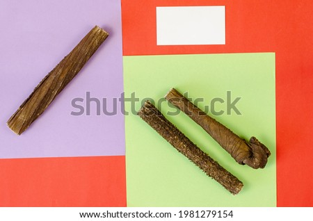Marketing and advertising of animal products concept. Dog treats and business card on a colorful background. Dried beef stomach sticks. Naturally dried goodies for dogs. Pet. Top view, flat lay.