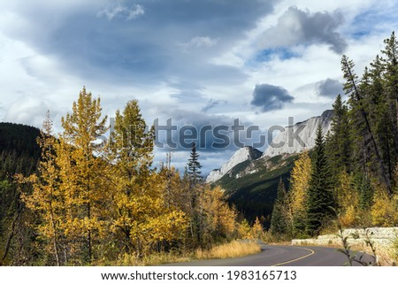Road to Miette Hot Springs - the Hottest Springs in the Canadien Rockies. The magic colors of northern autumn. Rain clouds cover the sky. Concept of active, car and photo tourism
