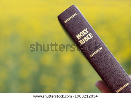 Word of God isolated Holy Bible background Christian concept. Wisdom love faith trust in Jesus Christ. Reading Bible Book for hope encouragement forgiveness eternal life.