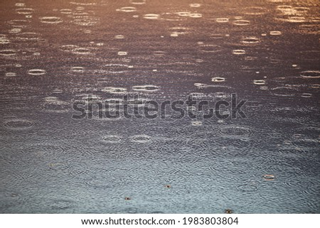 Circles from raindrops and bright reflections on a bright golden and silver water surface. Beautiful glowing circles on water surface close-up. Calm water surface during the rain. Abstract background. Royalty-Free Stock Photo #1983803804