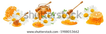 Honey and chamomile set isolated on white background. Package design elements with clipping path Royalty-Free Stock Photo #1988013662