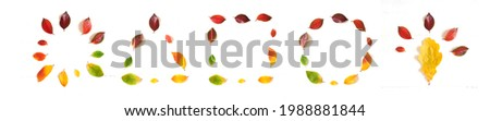 Geometry autumn, leaves in different shapes, circle, square, triangle, idea banner. High quality photo