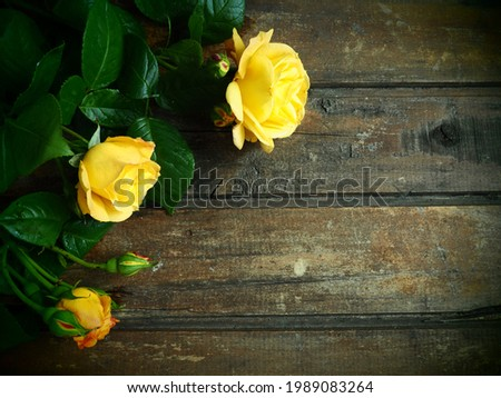 yellow roses on a wooden background. Beautiful bouquet of 3 roses on a dark wooden table. Greeting card with 8 March, Mother's Day or Valentine's Day. Dark vignetting