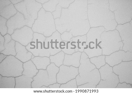 A black and white image of a plastered wall covered in crooked, curved cracks. Vignetting. Image for texture, background. Copy space.