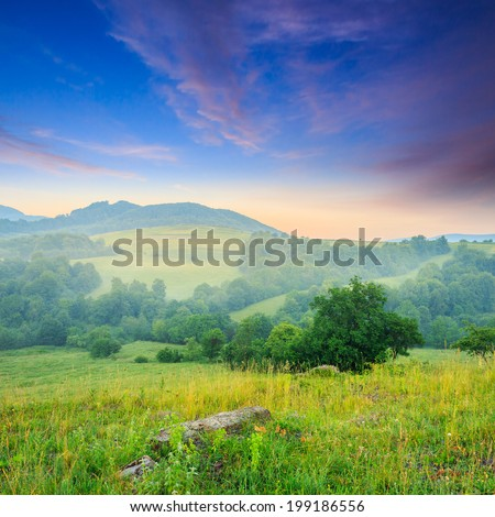 cold summer morning fog in mountain meadow in the morning #199186556