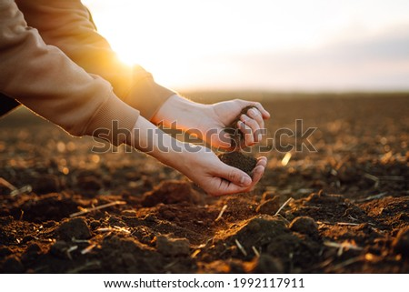 Farmer holding soil in hands close-up. Male hands touching soil on the field. Farmer is checking soil quality before sowing wheat. Agriculture, gardening or ecology concept Royalty-Free Stock Photo #1992117911