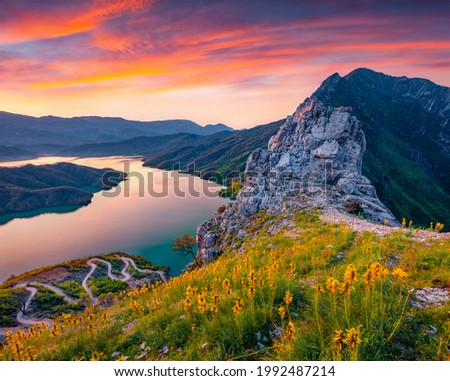 Captivating sunrise on Bovilla Lake, near Tirana city located. Majestic spring landscape with blooming yellow flowers. Superb outdor scene of Albania, Europe. Royalty-Free Stock Photo #1992487214