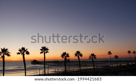 Palms silhouette on twilight sky, California USA, Oceanside pier. Dusk gloaming nightfall atmosphere. Tropical pacific ocean beach, sunset afterglow aesthetic. Dark black palm tree, Los Angeles vibes. Royalty-Free Stock Photo #1994421683
