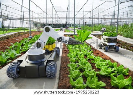 Agriculture robotic and autonomous car working in smart farm, Future 5G technology with smart agriculture farming concept Royalty-Free Stock Photo #1995250223