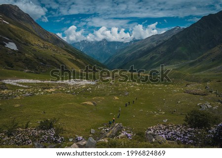 Group of people trekking in beautiful vast mountain valley with white rhododendrons under a partially open sky while doing the Bali pass trek in the Sankri region of Garhwal Himalayas in Uttarakhand.  Royalty-Free Stock Photo #1996824869