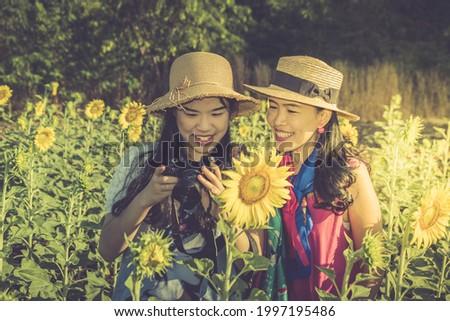 Asian thai women use camera shooting photo sunflower flower field in morning time at Saraburi Thailand. Image vintage.