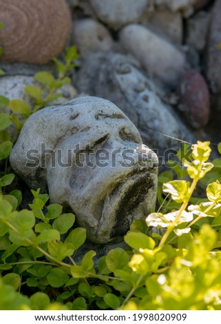picture with a stone in green herbs, the stone looks like a human face, decor in the garden