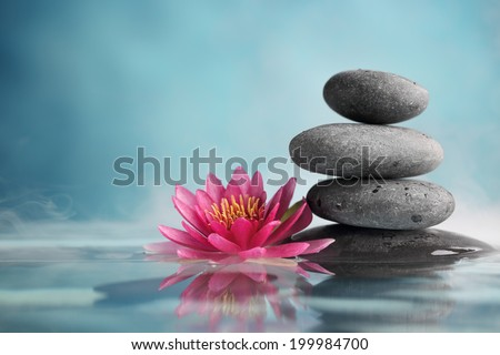 Spa still life with water lily and zen stone in a serenity pool #199984700