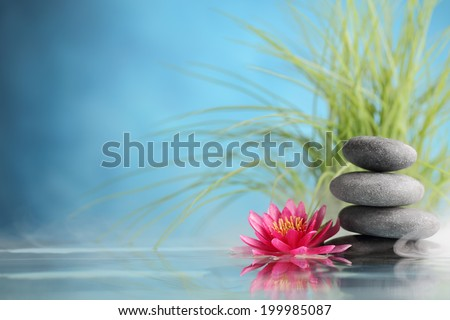 Spa still life with water lily and zen stone in a serenity pool #199985087
