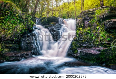 Beautiful waterfall in the forest. Waterfall view. Waterfall in forest. Forest waterfall Royalty-Free Stock Photo #2000202878