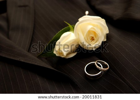 Wedding rings & boutonniere #20011831