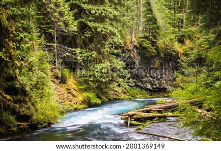 River flow in the forest. Forest river flow. River stream in forest. Deep forest river stream view Royalty-Free Stock Photo #2001369149