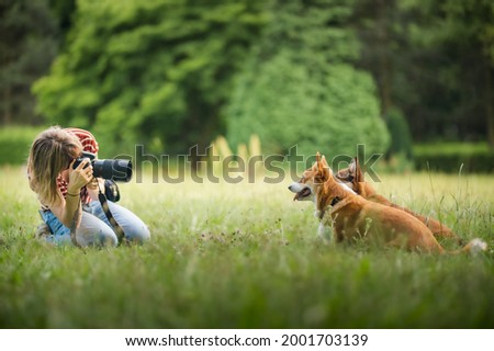 Young woman making a photo of welsh corgi pembroke dogs with a professional dslr camera