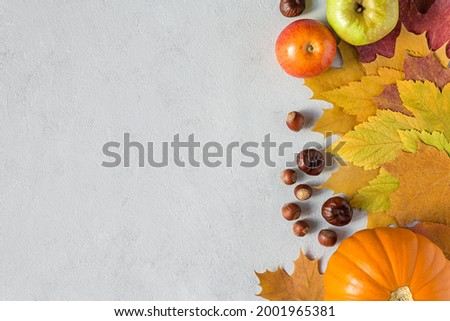 Autumn picture with yellow maple leaves, nuts, apples and pumpkin. Fall harvest on concrete gray background flat lay with copy space.
