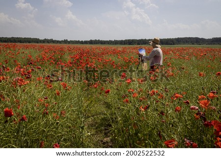 Mature woman artist paints a picture on a poppy field. Hand holds a brush and makes a smear of paint, full-length portrait at work