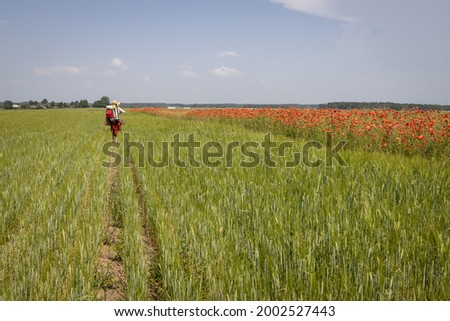 A mature woman artist with a painted picture returns from the open air. A woman with a backpack walks along a poppy field.